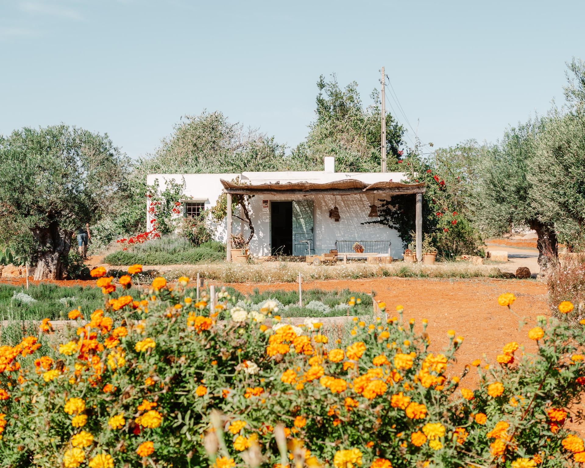huis te koop Ibiza renoveren